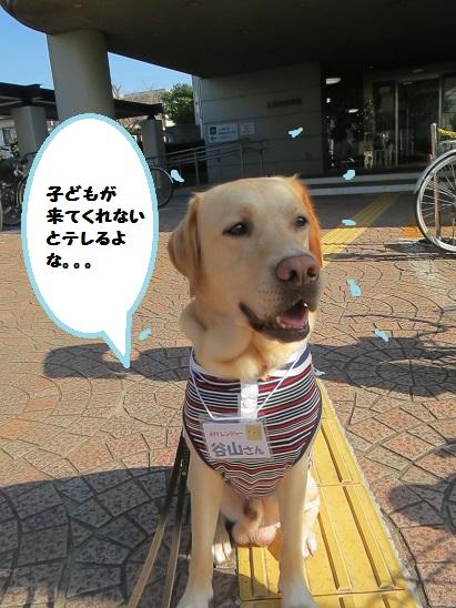 2013_1012_091050img_2453